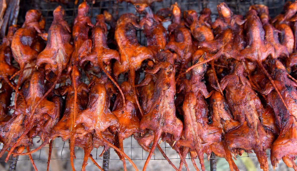 kawok kuliner ekstrim khas manado